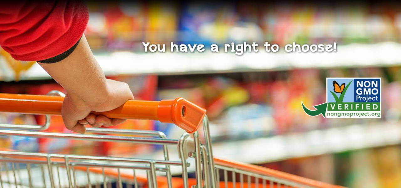 "Photo: Customer shopping at Down to Earth - ""You have a right to choose!"""