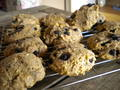 Photo: Macadamia Nut and Berry Scones