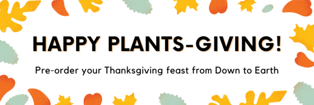 Graphic: Happy Plants-Giving! Pre-order your Thanksgiving feast from Down to Earth
