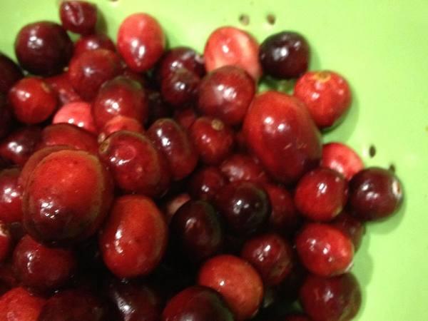 Photo: Fresh Cranberry Spritzer
