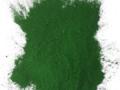 Photo: Green Moringa Powder